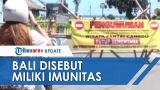 Bali Disebut Punya Imunitas Misterius terhadap Covid-19, Tak Ada Berita Rumah Sakit Membeludak