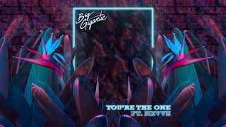 Big Gigantic   You're The One (feat. Nevve)