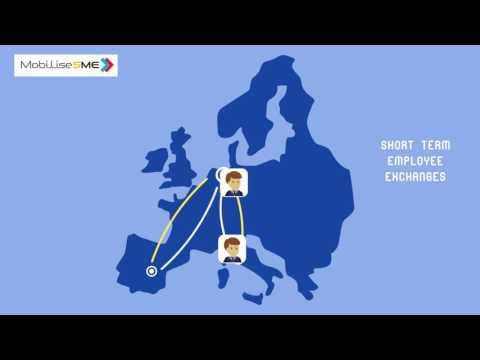 Razmena iskustava za mala i srednja preduzeća sa kolegama iz EU