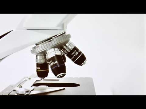 Wie man Insulin-Standards Video Prick
