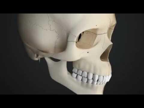 Lavorare con la colonna vertebrale e le articolazioni in Beloyarov da guaritore