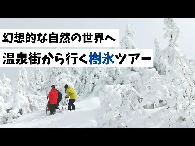幻想的な自然の世界へ 温泉街から行く樹氷ツアー(秋冬版)