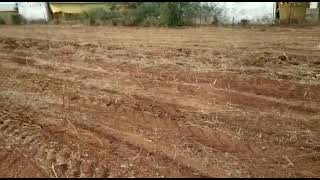 9.5 Acre Farm Land for Sale in Amangal, Hyderabad