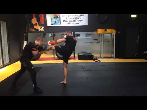 Throwback time: Kickboxing For MMA with Duane Ludwig 2019
