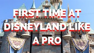 FIRST TIME AT DISNEYLAND LIKE A PRO (TIPS & TRICKS, RIDE COUNT) 2018