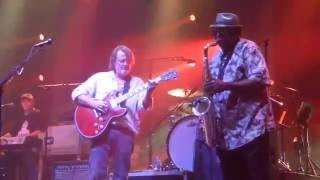 """Widespread Panic w/Dirty Dozen 