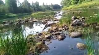 Рыбалка на реке мелеча тверская область