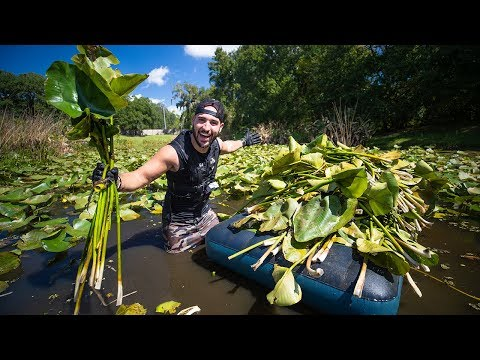 Removing 5,000+ HARMFUL Plants From My BIG Fish POND!! (massive extraction)