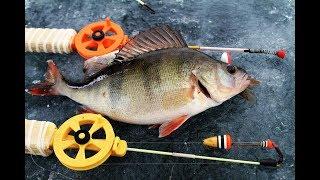 Как ловить окуня на мясо рыбы