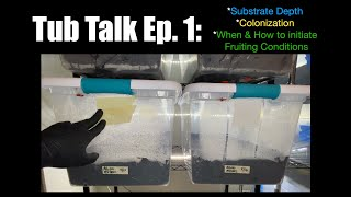 Tub Talk Ep. 1: Substate Depth/Colonization/When & How To Initiate Fruiting Conditions