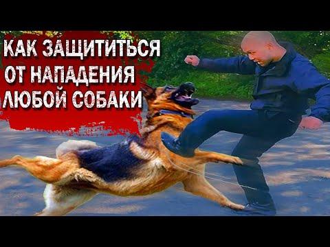 https://youtu.be/KSVB4g5L4to
