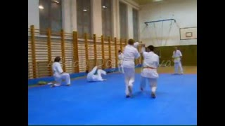 preview picture of video 'Aikido Dojo Opava 2010'