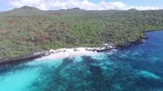 Galapagos by drone: Champion Island and Floreana Island
