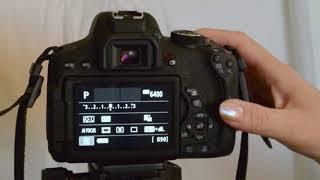 VIDEO53 Canon EOS Rebel T3 T5 T6 T7 Series Camera Auto Focus Setting