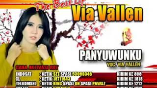 Lirik Lagu 'Panyuwunku' dari Via Vallen, Lengkap dengan Chord Kunci Gitar