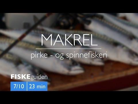 Makrelfiskeri med Gordon P. Henriksen