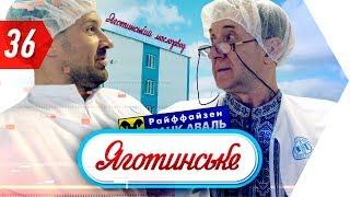 Предпринимательство в Украине, молочный бизнес, мотивация на успех, бег и свое дело | Бегущий Банкир