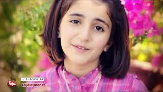 fi ha, zamil zamil, janal janal original arabic nasheed english