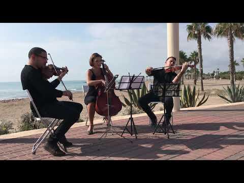 """Una preciosa versión del tema """"La vie en rose"""" de Edith Piaf para trío de cuerda"""