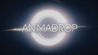 Hans Zimmer   Interstellar (Animadrop Remix)