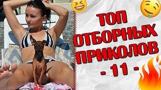 ПРИКОЛЫ 2019 Топ Отборных Приколов #11 │Ржака Юмор Угар Joke Humor│
