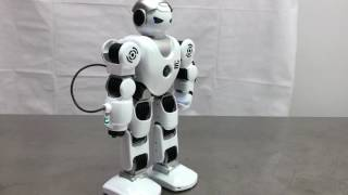 Strike force robot