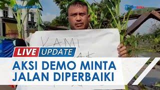 Warga Serang Banten Gelar Aksi Demo Tuntut Jalan Rusak Diperbaiki, Tanam Pohon Pisang di Jalan