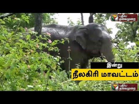 Gummidipoondi-Muthal-Kumari-Varai--Nilagiri-21-03-2016-Puthiyathalaimurai-TV