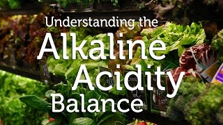 How to  Detox and Fight Disease using Alkaline Foods & pH Balance Diet   Wellness