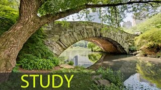 3 Hour Study Music to Focus and Concentrate: Relaxing Music, Calming Music, Soothing Music ☯1626