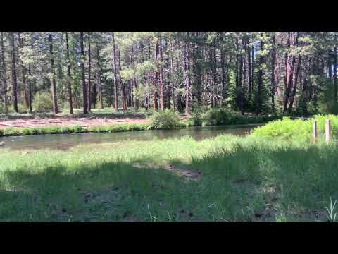 Video Of Camp Sherman Campground, OR