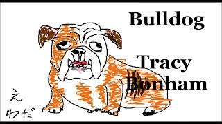 Bulldog(Tracy Bonham) Guitar Cover