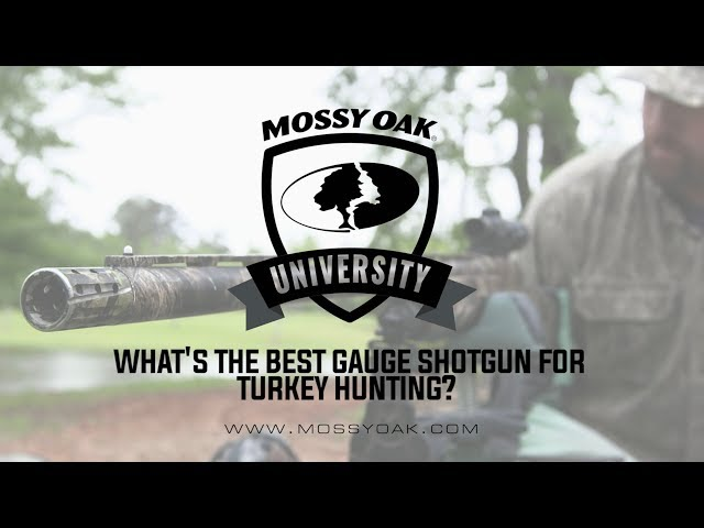 How To Pattern A Shotgun for Turkey Hunting | Mossy Oak