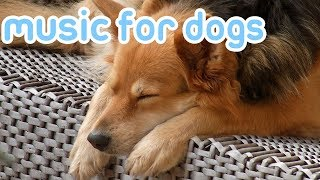 How to Help My Dog Sleep! Relaxing Music for Dogs!