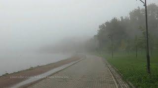 Туман в Коломенском