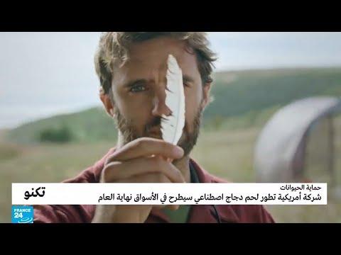 العرب اليوم - شاهد: لحم دجاج اصطناعي مُطوِّر سيطرح في الأسواق نهاية العام !!