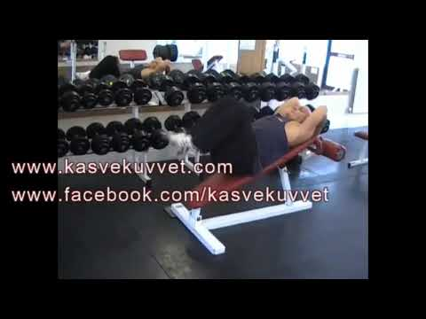 Decline Bench Knee Raise