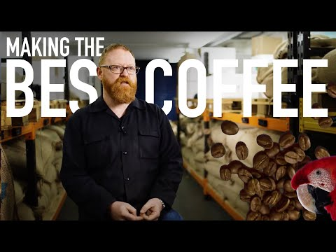 Everything You Don't Need to Know About Coffee