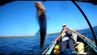 Рыбалка в октябрьске самарской области на месяцев
