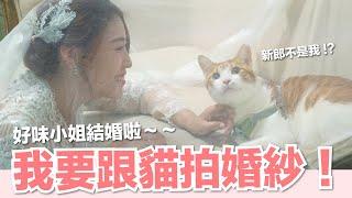 【好味小姐】我要跟貓拍婚紗!好味小姐結婚啦~ 好味貓日常EP70