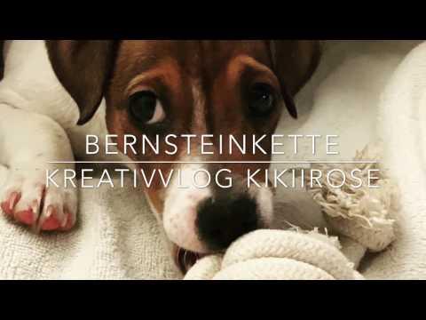 Bernsteinkette für den Hund