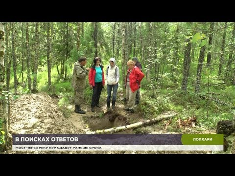 В Шурышкарском районе учёные ищут следы стоянок древнего человека