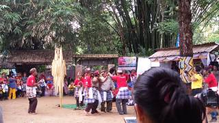 preview picture of video 'Opening Ceremony by Damang and Penghulu Dayak Loksado HSS'
