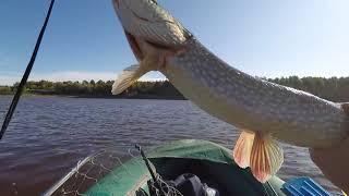 Рыбалка на реке вагай у деревни новоаптула