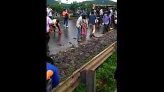 TODAY Fish Rain in Kanyakumari