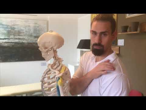 Il trattamento della colonna vertebrale zastuzhen