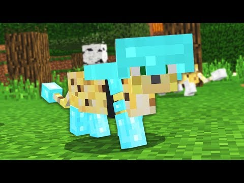 HOW TO GET MOB ARMOUR IN MINECRAFT! download YouTube video