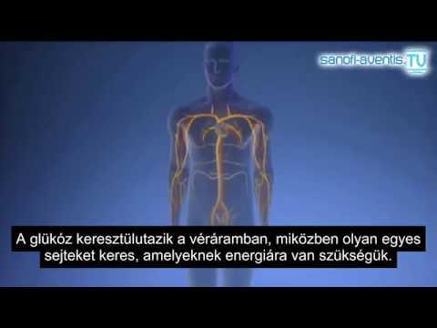 Adag adagolt inzulin a glükóz