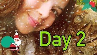 SECRET CAT FOOTAGE - 12 DAYS OF CHRISTMAS (DAY 2) SOPHIA GRACE