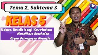 Kelas 5 Tema 2 Subtema 3 Pembelajaran 1
